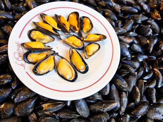 2015-06-20-1434811871-9782569-Mussels.jpg