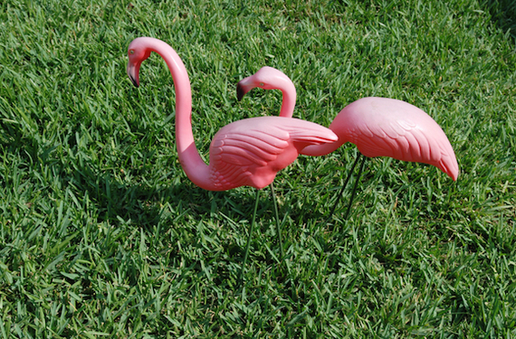 2015-06-22-1435004974-5913070-flamingo.jpg