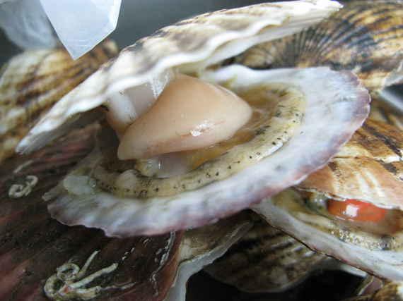 2015-06-23-1435070096-1533942-seafood_4.jpeg