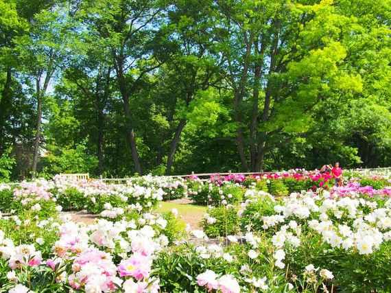 2015-06-24-1435161379-5727345-beautifulplaces_22.jpeg