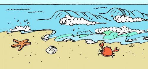 2015-06-29-1435586502-8317354-beachy500.JPG
