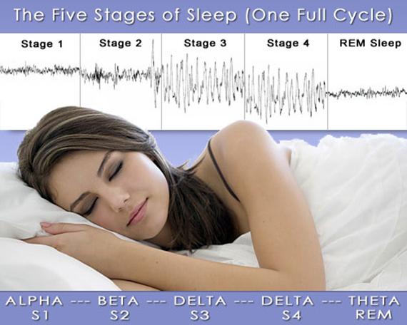 Stages of Sleep and Sleep Cycles
