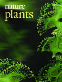 2015-07-08-1436368843-3609138-nplants_cover_APR15112.jpg