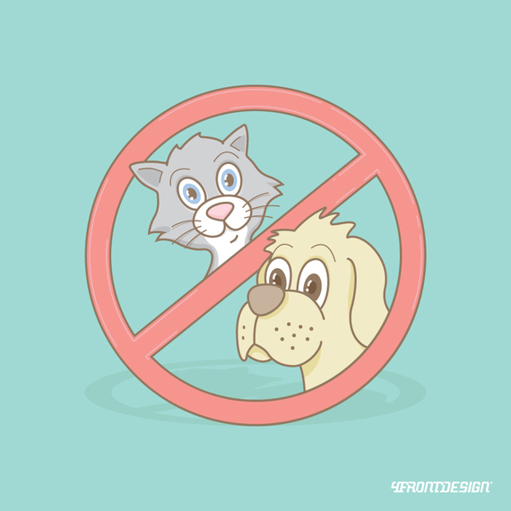 2015-07-20-1437404904-5403757-catdog.jpg