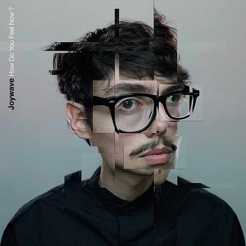 2015-07-27-1438025179-3534215-joywave_hdyfn_cover_final_700x700px.jpg