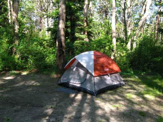 2015-07-29-1438182673-9169749-camping4.jpeg