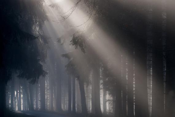 2015-08-01-1438427341-5412865-fog693401_1920.jpg