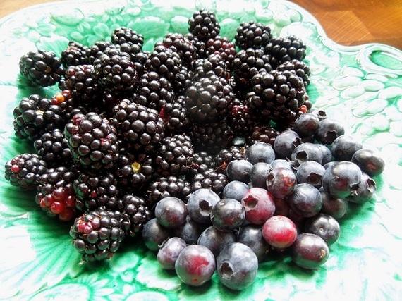 2015-08-06-1438874662-795081-berries.jpg