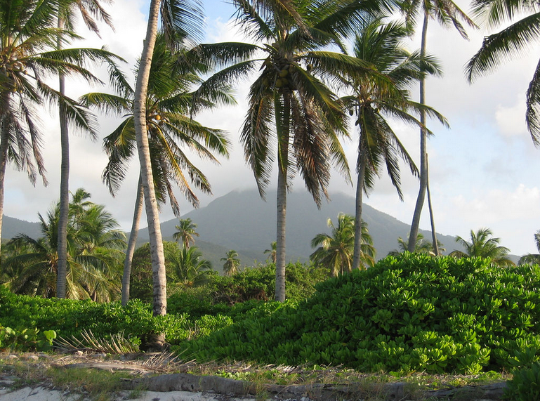 4 Reasons Why Nevis Is Worth Finding On A Map Huffpost
