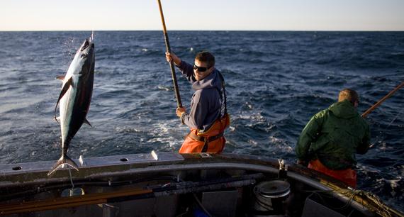 2015-08-07-1438911145-5226789-fishing7.jpg