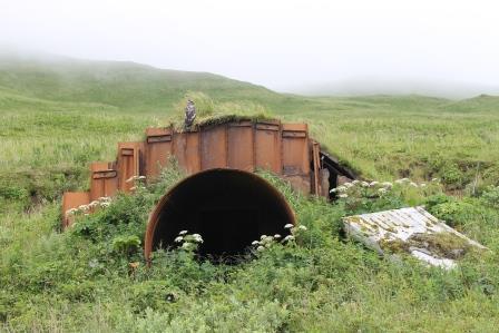 2015-08-08-1439050081-4857441-Bunker.jpg