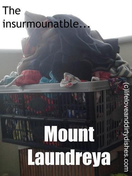 2015-08-09-1439116486-9544915-Mountlaundry.jpg