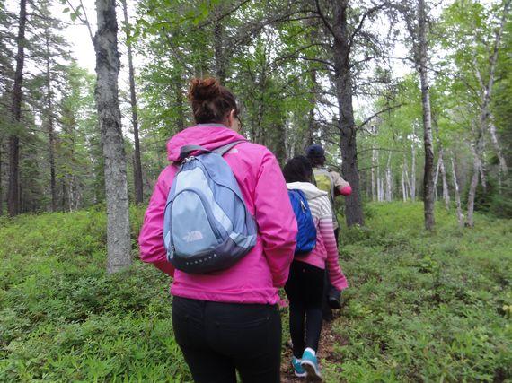 2015-08-09-1439153866-1593366-hikinginborealforestquebec.jpg