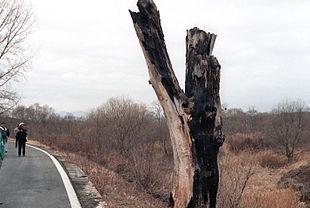 2015-08-10-1439179826-7102575-DMZ_incident_tree.jpg