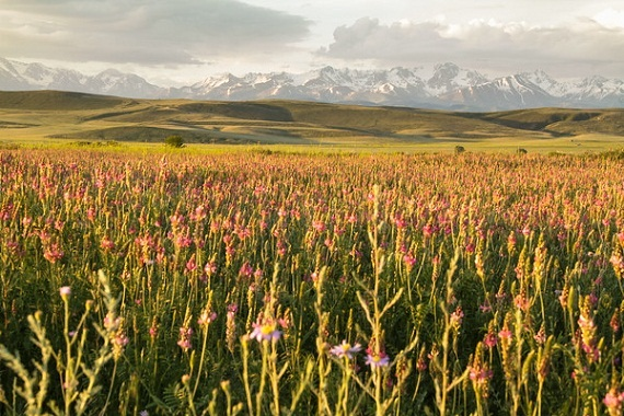 2015-08-10-1439216103-3351987-Kyrgyzstansunrise.jpg