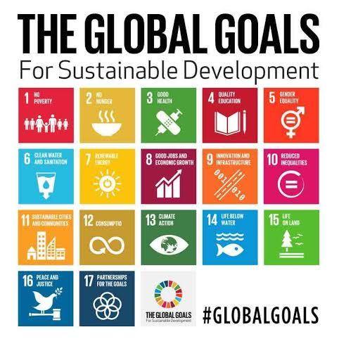 2015-08-10-1439228982-8238862-UNGlobalGoals_GC4W.jpg