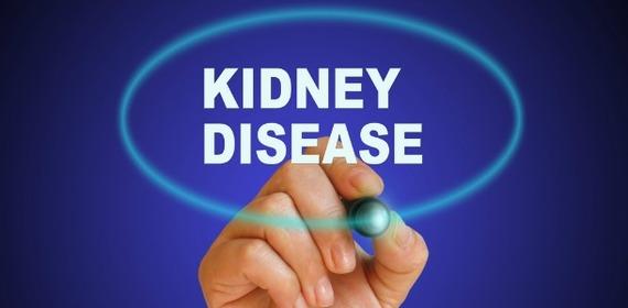 2015-08-11-1439308424-2812758-kidneydisease.jpg