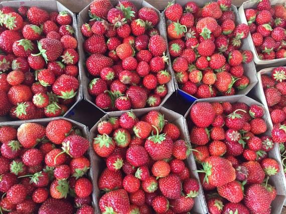 2015-08-12-1439388242-9346866-strawberries.jpg
