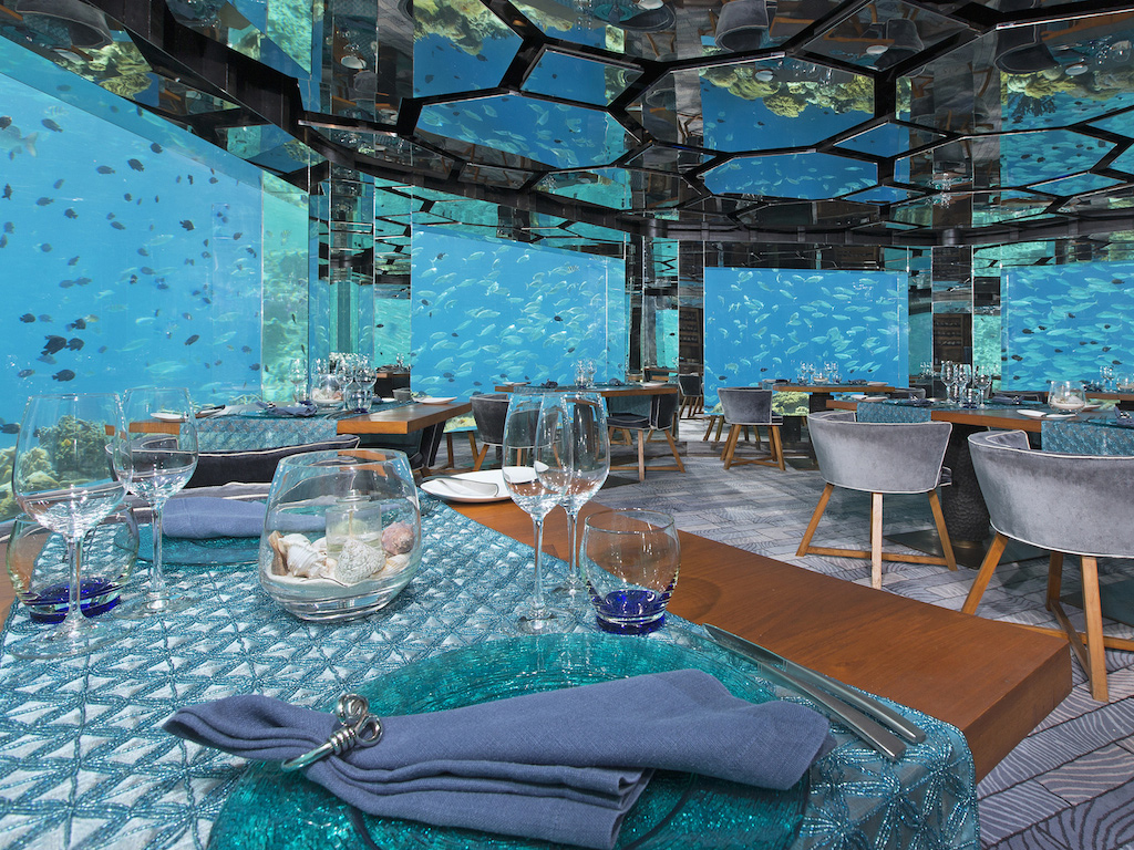5 underwater restaurants and bars around the world huffpost for Oceanic fish tanks