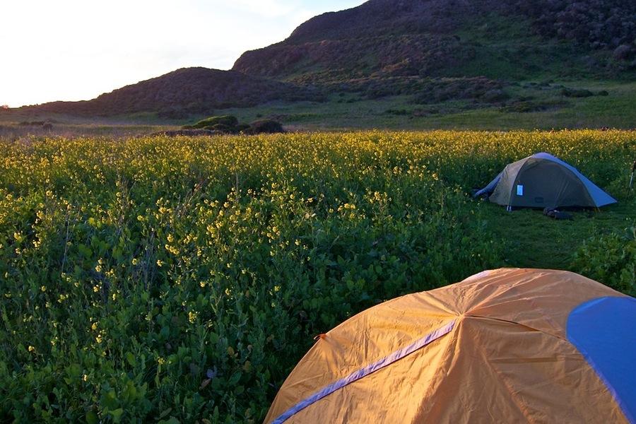 Car Camping Near Point Reyes Ca