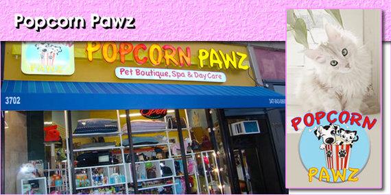 2015-08-15-1439648201-5511534-PopcornPawzpanel1.jpg