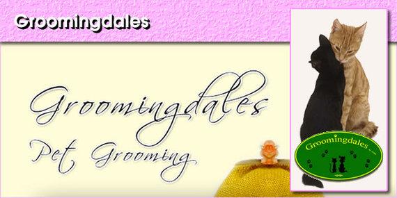 2015-08-15-1439648520-3565970-Groomingdalespanel1.jpg