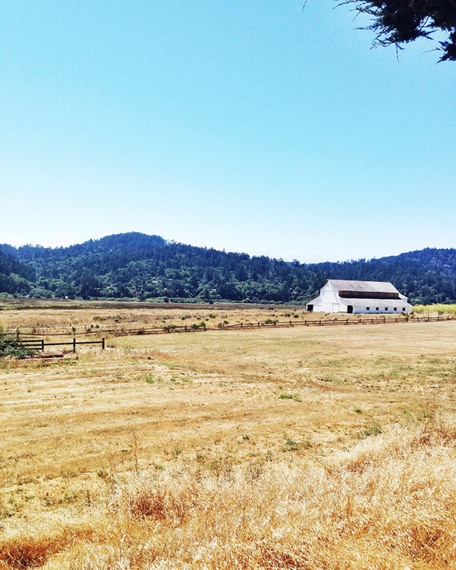 2015-08-17-1439840828-52276-spot_road_trip_point_reyes_barn.jpg