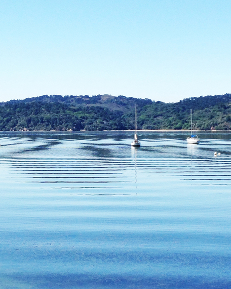 2015-08-17-1439841540-3763842-spot_road_trip_tomales_bay_boats.jpg