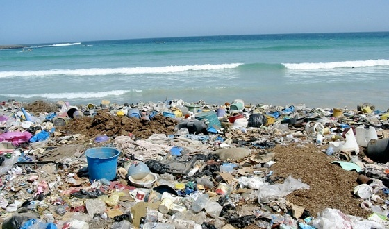 The Effects of Ocean Dumping