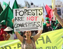 2015-08-19-1439980006-4549901-forestsprotestblog.jpg