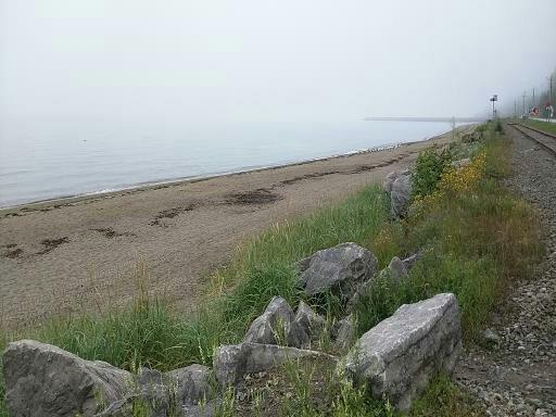 2015-08-20-1440111232-3641203-Beach.jpg