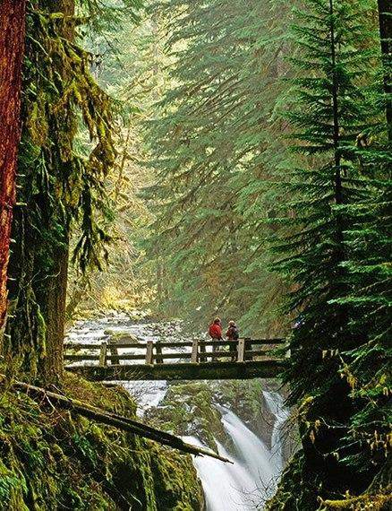 2015-09-01-1441120976-5252018-item5.rendition.slideshowVertical.waterfallbridges06.jpg