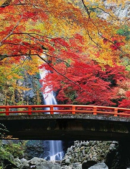 2015-09-01-1441121023-7911486-item6.rendition.slideshowVertical.waterfallbridges07.jpg