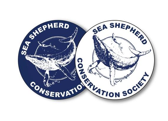 2015-09-08-1441730730-8798663-SeaShepherdDrReeseHalter.jpg