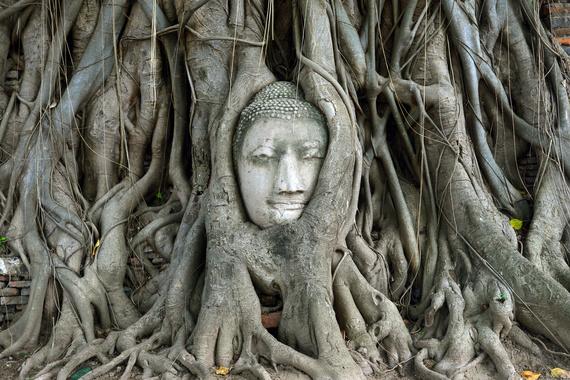 2015-09-10-1441919052-8172938-BuddhaHeadinBodhiTreeWatPhraMahaThatAyutthayaThailand.jpg