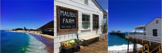 2015-09-12-1442027736-1156057-Malibu_Farm.jpg