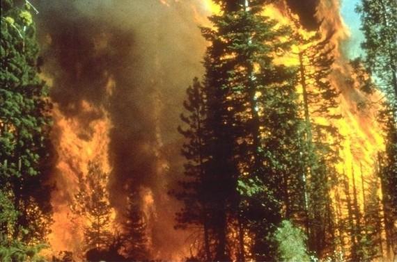 2015-09-20-1442770254-3615634-Wildfire_in_California.jpg
