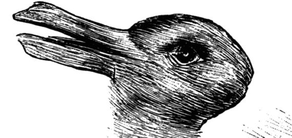 2015-09-22-1442927005-7292425-duckrabbit.png