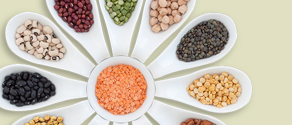 Role of Pulses in a Healthful Diet