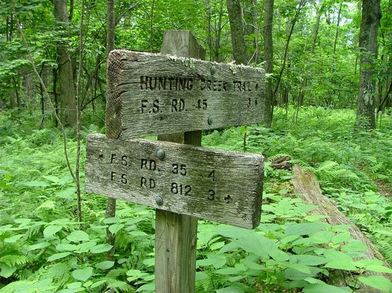 2015-09-28-1443470951-6162287-AT2forestsigns.jpg