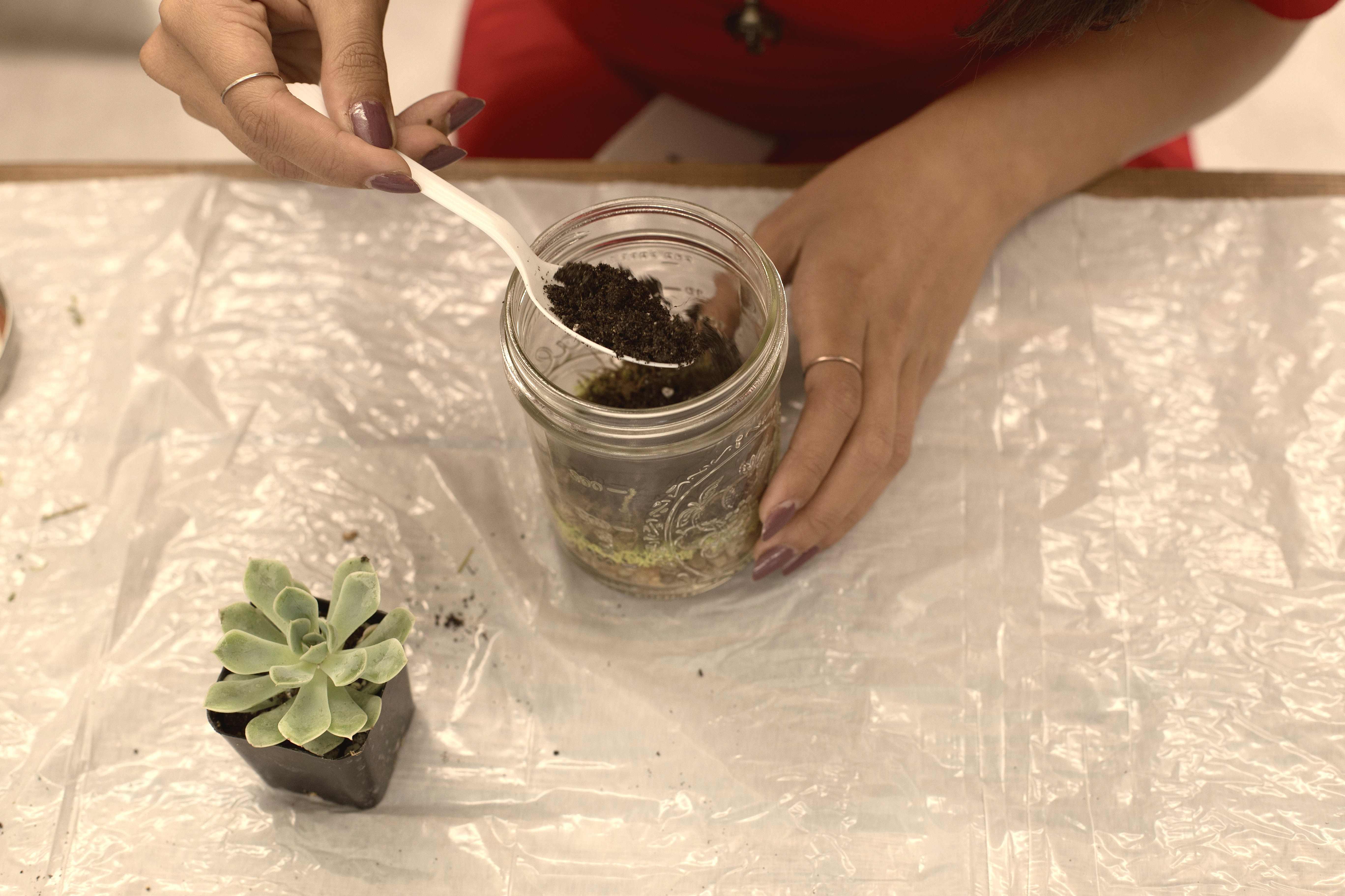 Diy Mason Jar Terrarium Tutorial Huffpost Life