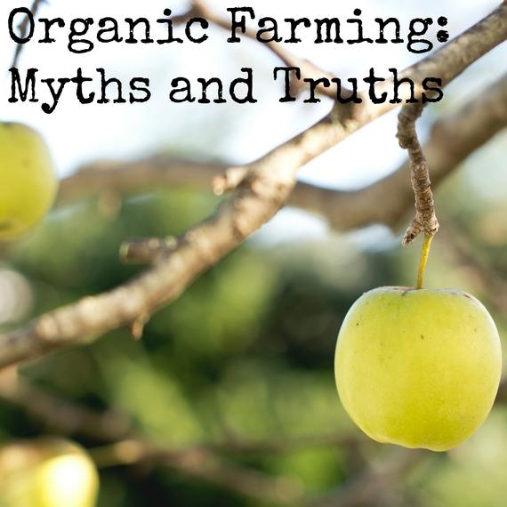 2015-09-29-1443543711-7950174-OrganicFarming.jpg