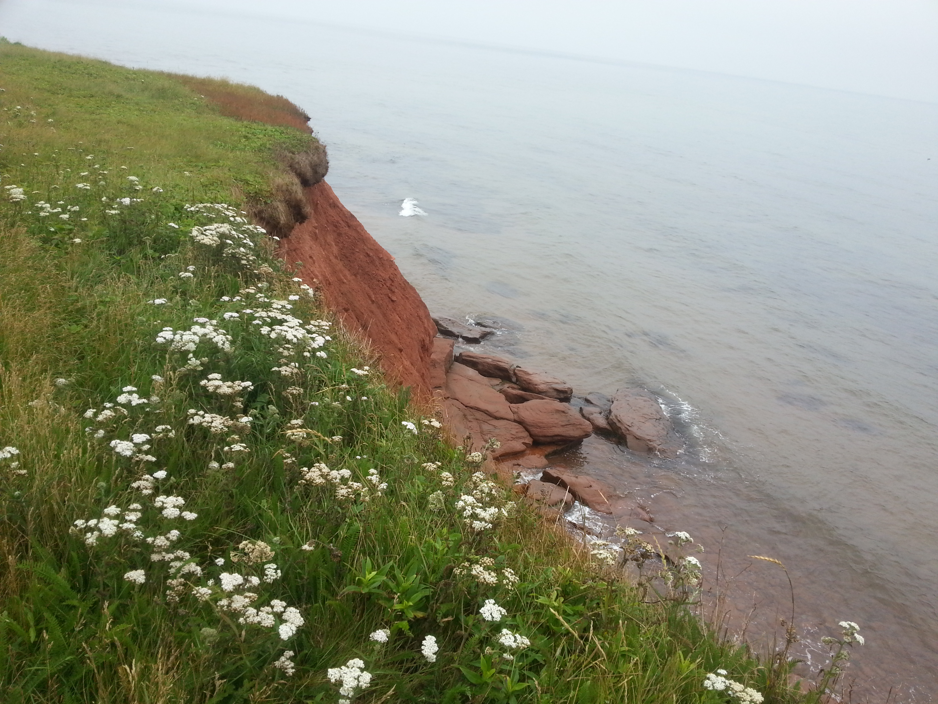 Discovering Prince Edward Island And Buying A House At The End Of