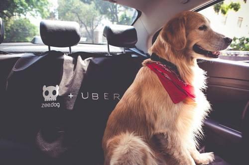 2015-10-06-1444133007-1761291-uber.jpg