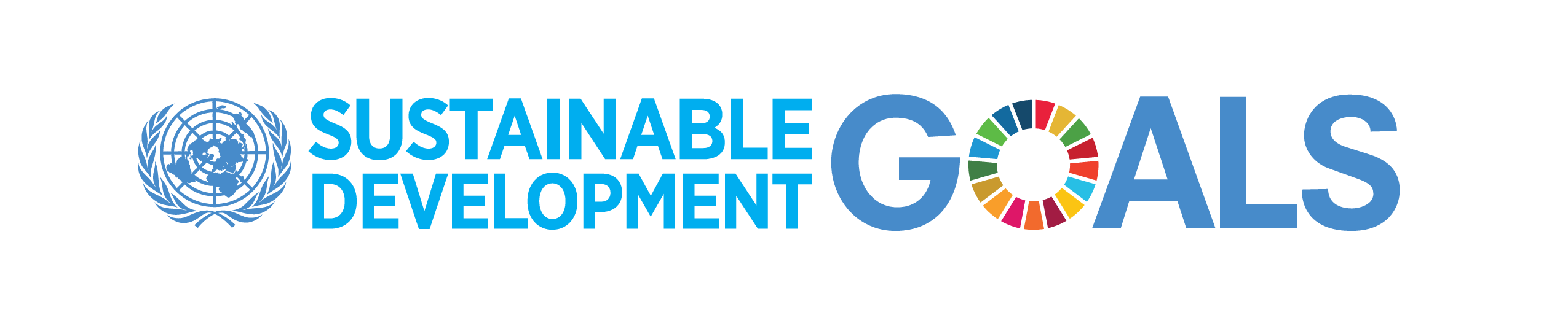 The New UN's Sustainable Development Goals: My Experience ...