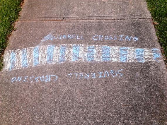 2015-10-11-1444596848-6747895-Hinshawsidewalksquirrelcrossing.jpg