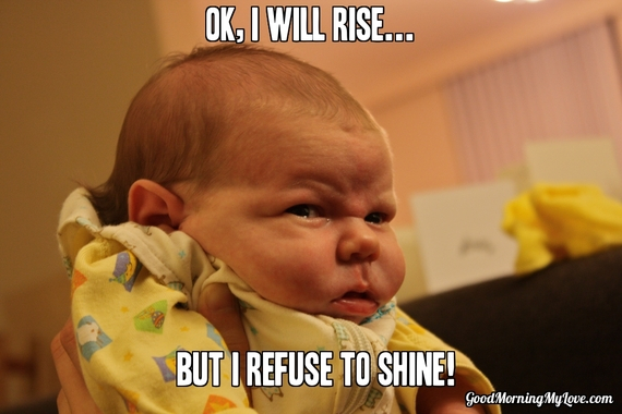 Funny Memes For The Morning : Cute and funny good morning memes huffpost