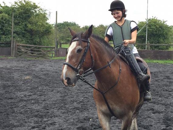 2015-10-14-1444839068-3343836-horse.jpg