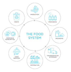 2015-10-15-1444909746-214502-foodsystemgraphicsquare.png