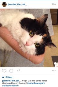 2015-10-17-1445114775-5141507-jasmineinstagram.jpg